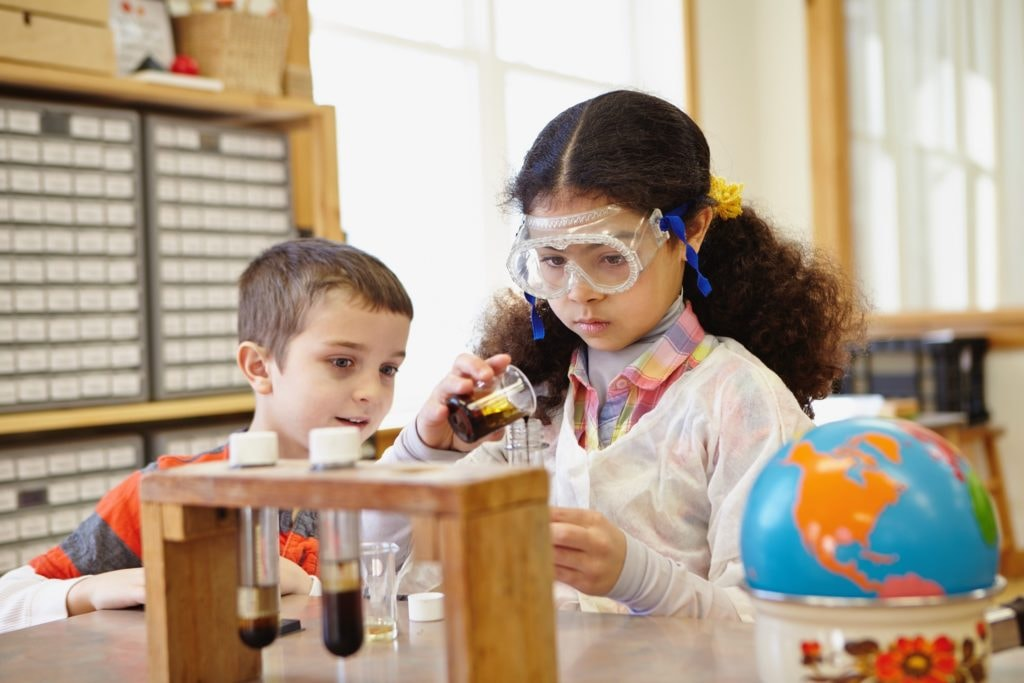 Montessori Lower Elementary Students Science