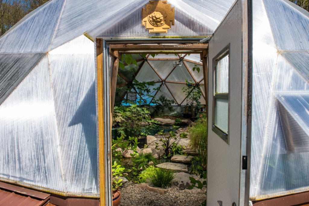 permaculture biodome on the Homestead School
