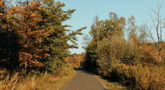CCHS Rail Trail
